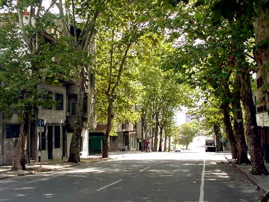 Paseando por Montevideo